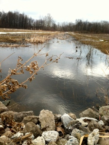 As the snow melts, a creek in Huron Township rises.
