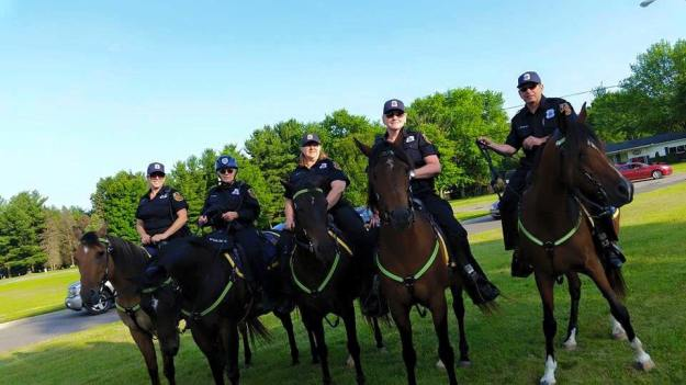 The Huron Township Police Mounted Unit patrolling the Romulus fireworks on July 2. Photo courtesy of the Huron Township Police Department.