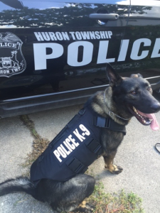 Police dog Chief wearing his newly donated protective vest. Photo/Huron Township Police Department