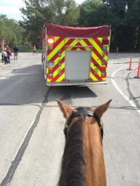 Photo/Huron Township Mounted Unit